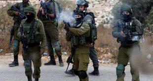الجيش الإسرائيلي /المنتصف
