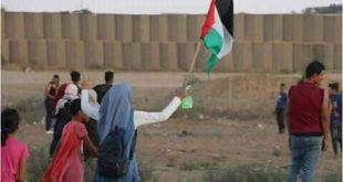 مظاهرات غزة-المنتصف