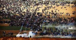 غزة مسيرات العودة/المنتصف