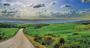 فلسطين طبيعة /المنتصف