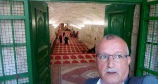 د.محمد ابو هنية /المنتصف