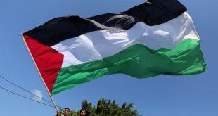 علم فلسطين -المنتصف