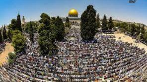 المسجد الأقصى -المنتصف
