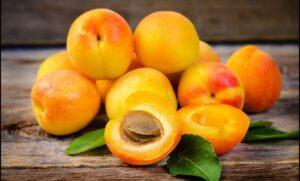 فاكهة المشمش -المنتصف