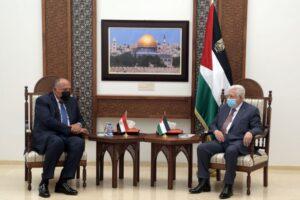 عباس وشكري -المنتصف