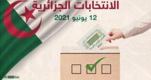 انتخابات الجزائر -المنتصف